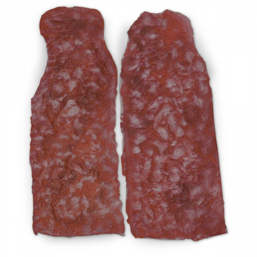 Life/form Moulage Wound - Simulated Arm Burns - Set of 2