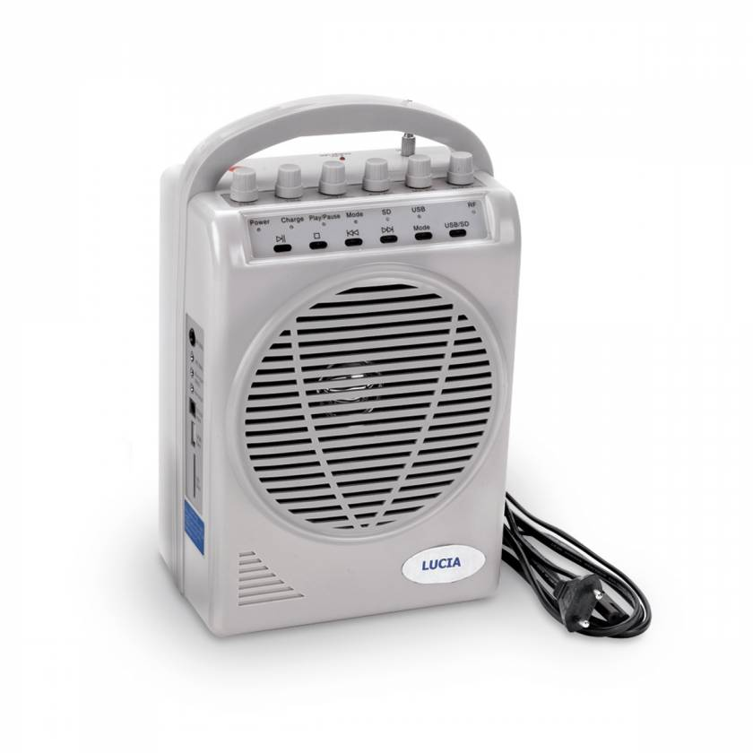 Amplifier/Speaker System - 110V