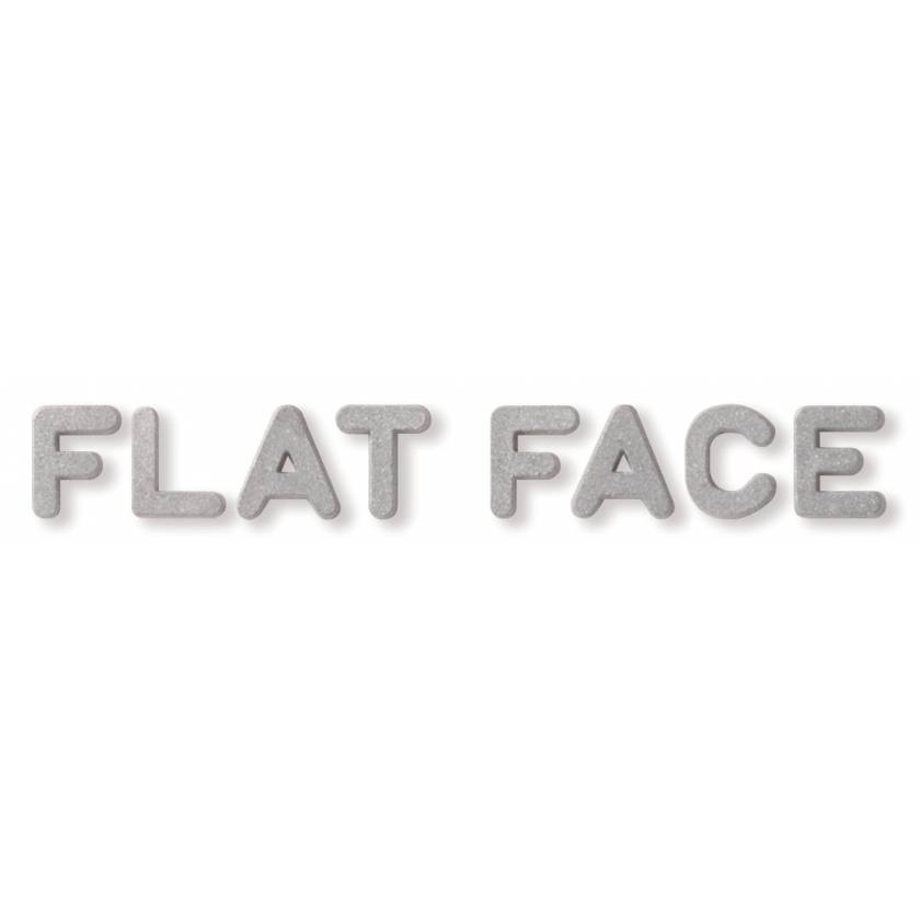 """1/2"""" Plastic Flat Face Lead Letter Mounted on 3/4""""H Vinyl Strip - 6 to 10 Characters"""