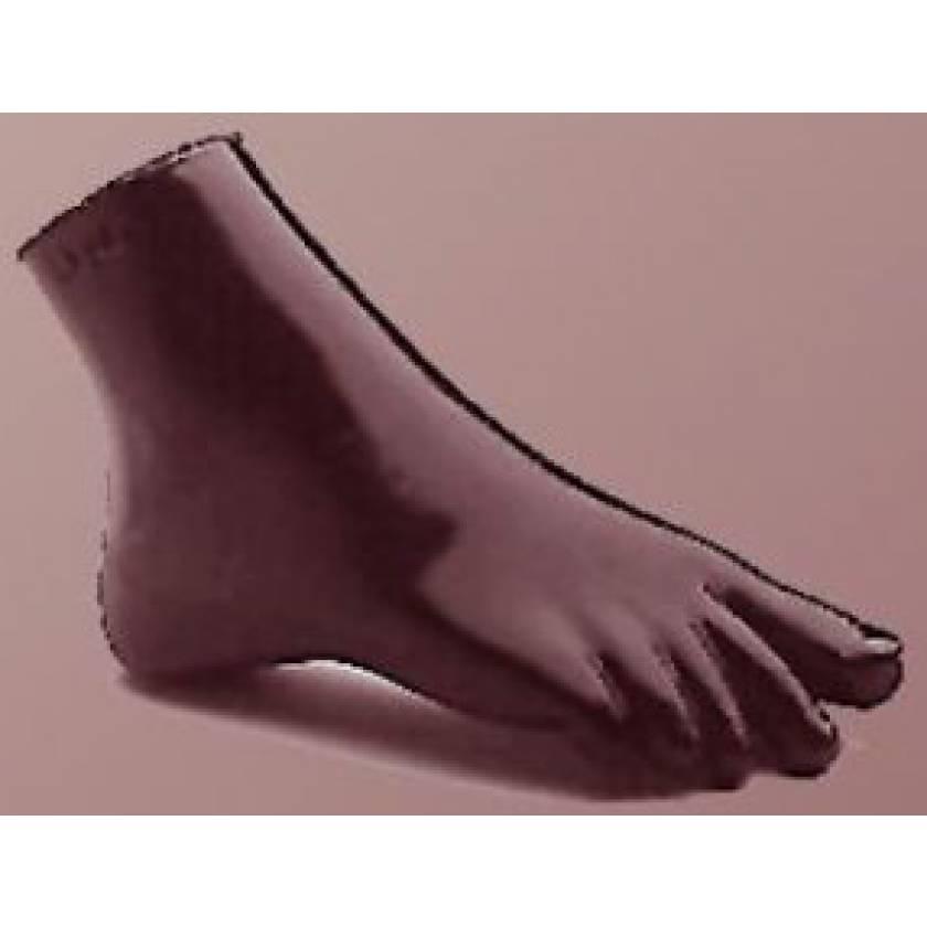 RSD Anthropomorphic Plantar Flexion Ankle Phantom
