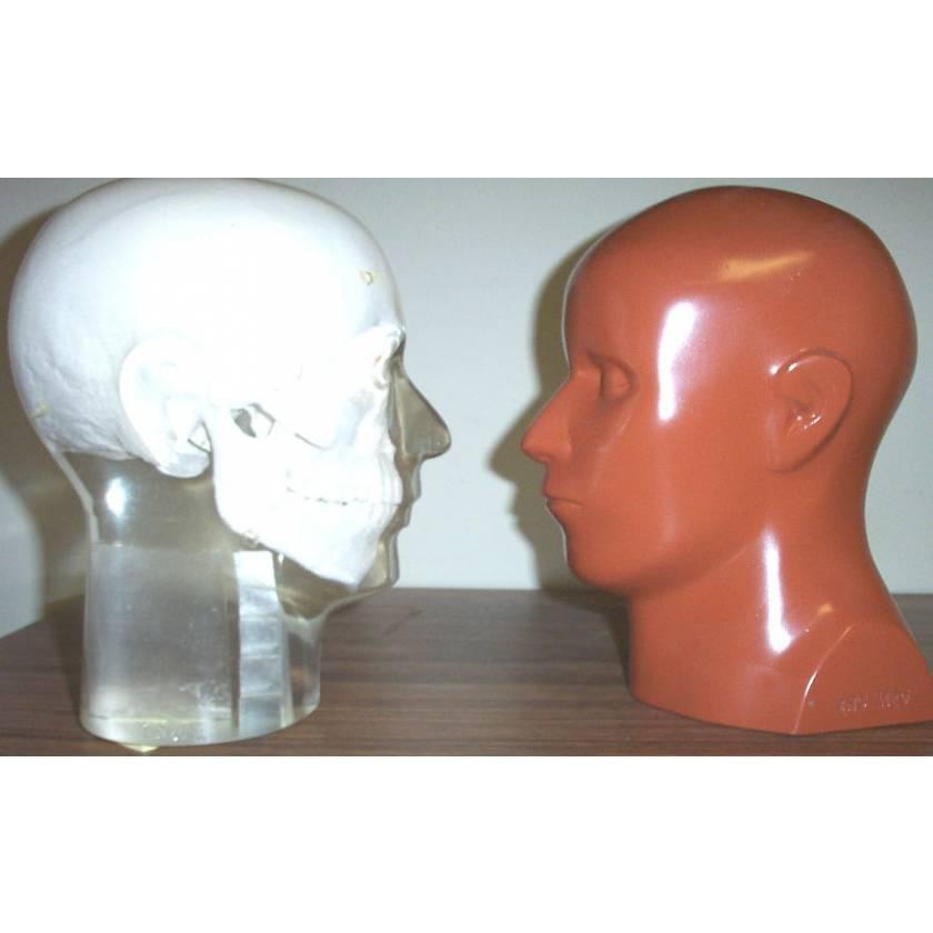 RSD Anthropomorphic Full Angiographic Head Phantom with Step Wedge