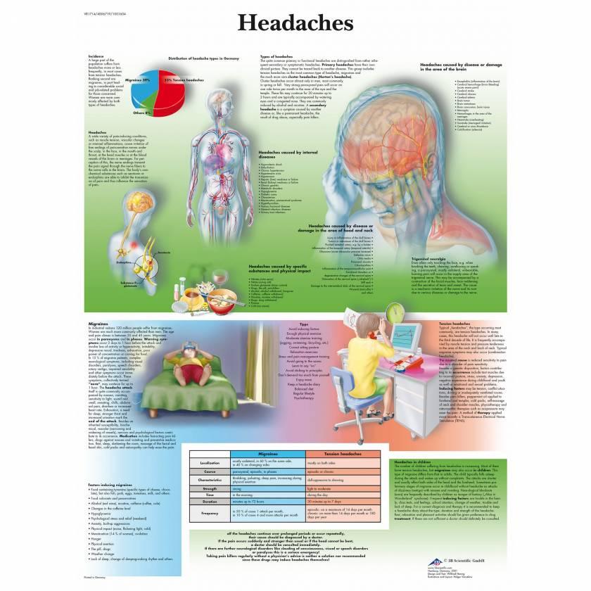 Headaches Chart