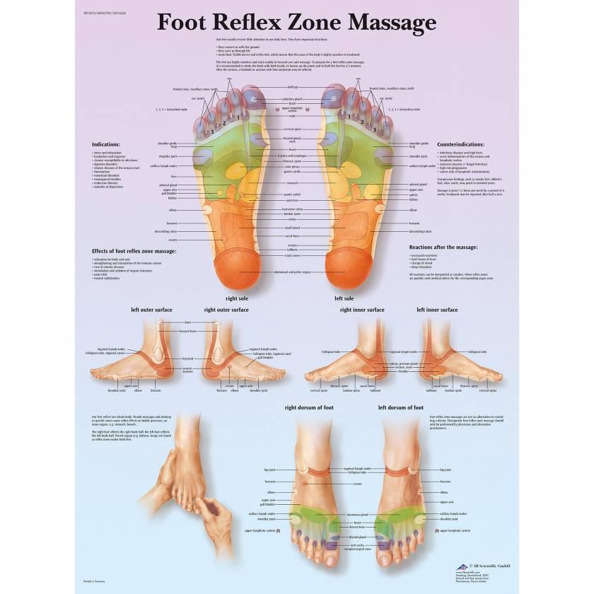 Foot Reflex Zone Massage Chart