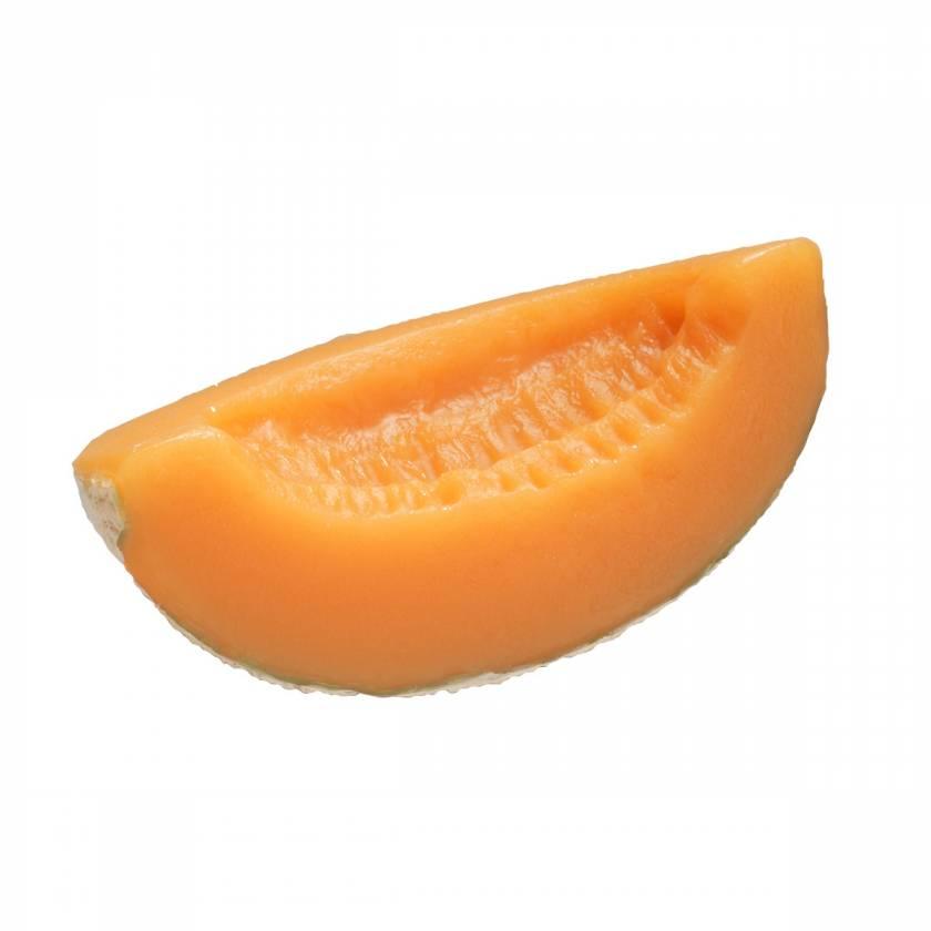 Cantaloupe Food Replica