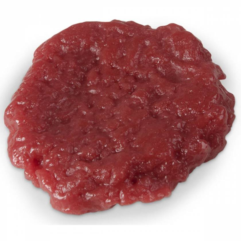 Life/form Ground Round Hamburger Food Replica - Raw