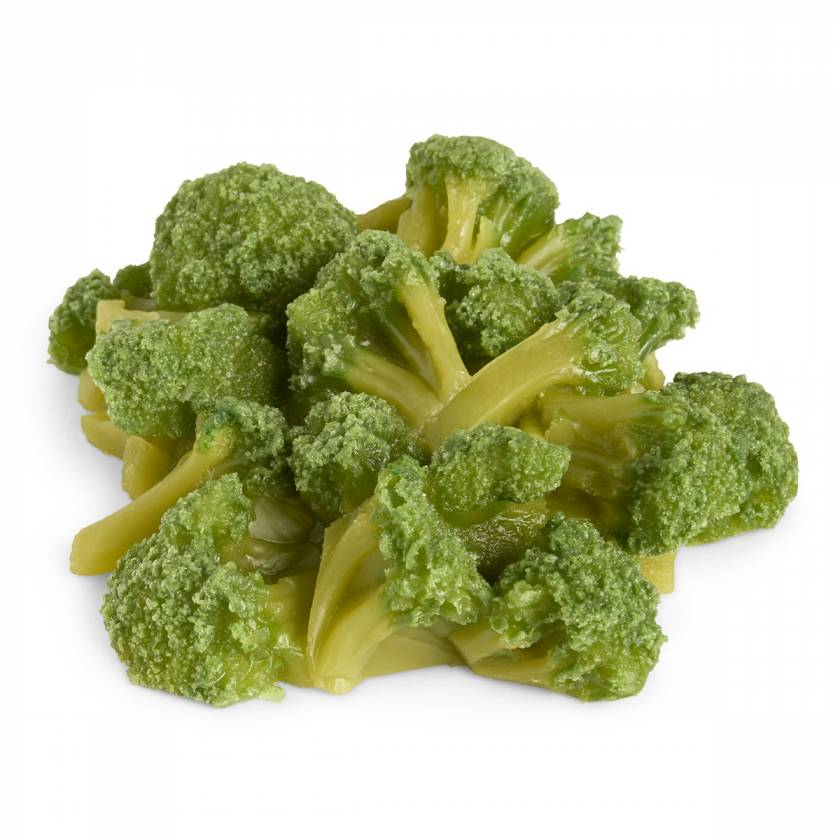 Life/form Broccoli Food Replica - 1 cup (240 ml)