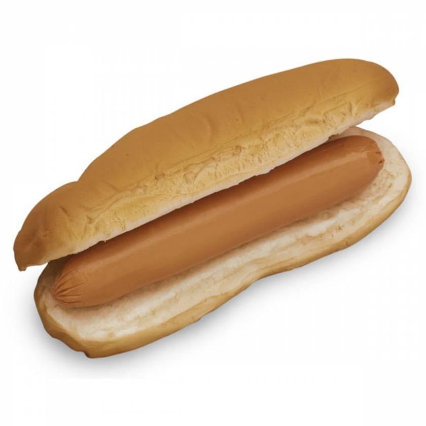 Life/form Hot Dog & Bun Food Replica