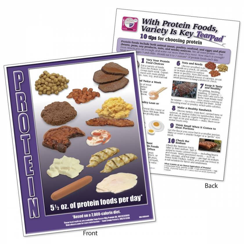 Food Group TearPad - Protein Group - 8-1/2 x 11 - 50 Sheets