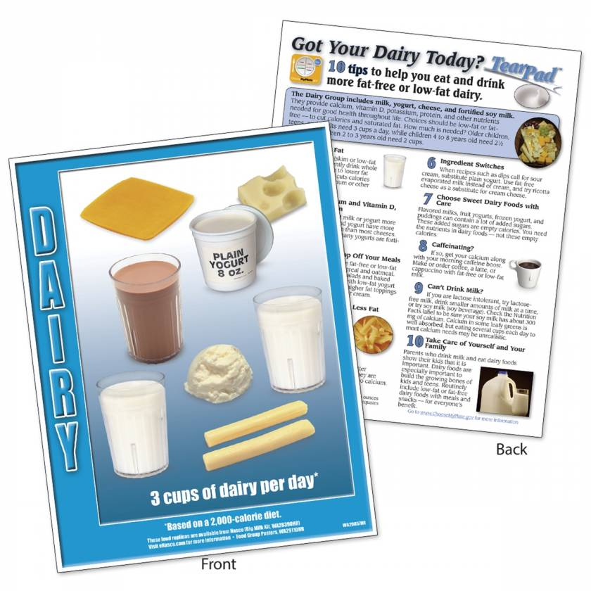 Food Group TearPad - Dairy Group