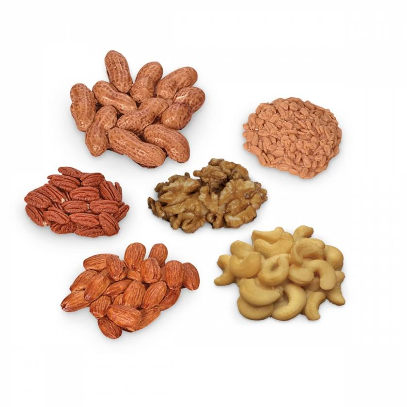 Life/form Nuts and Seeds Food Replica Kit