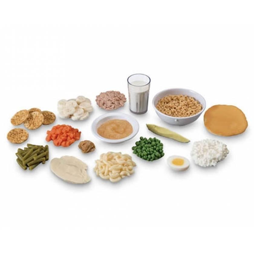 Life/form Finger Food Replica Kit