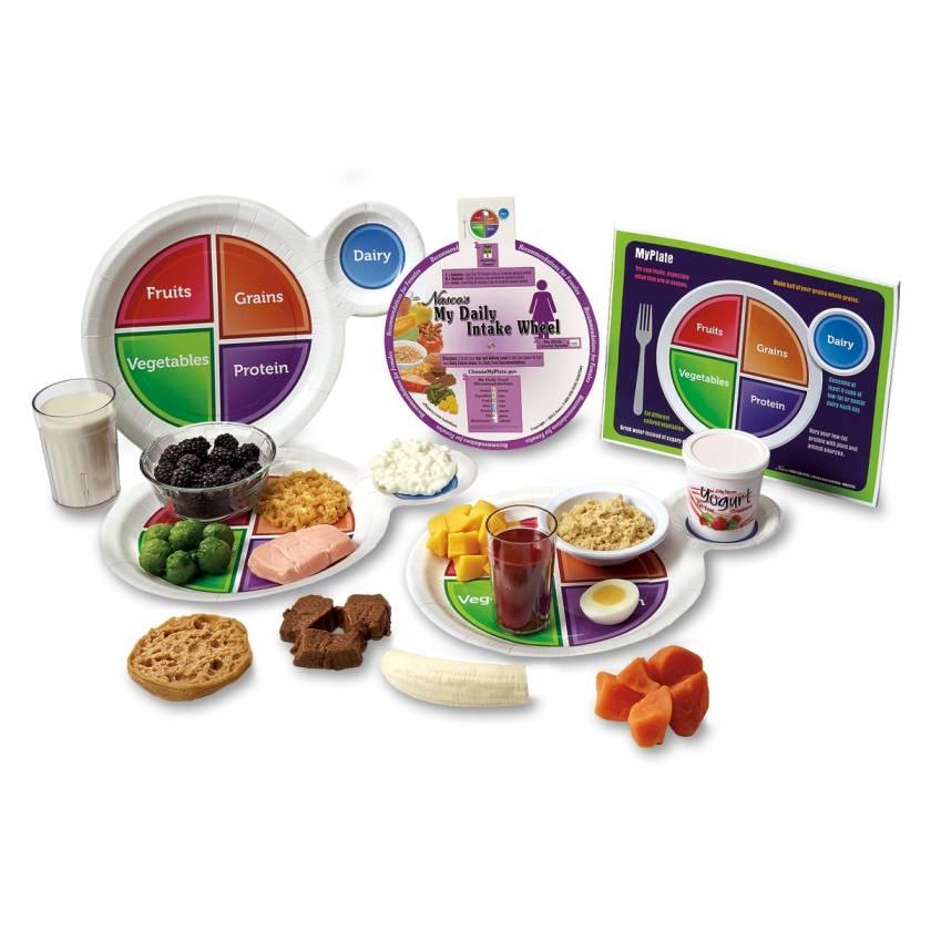 Life/form Mini MyPlate Food Replica Kit