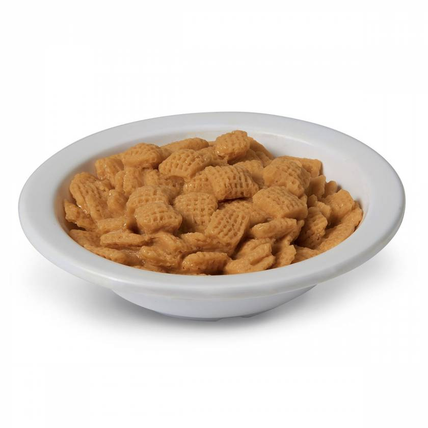 Life/form Cereal Squares Food Replica