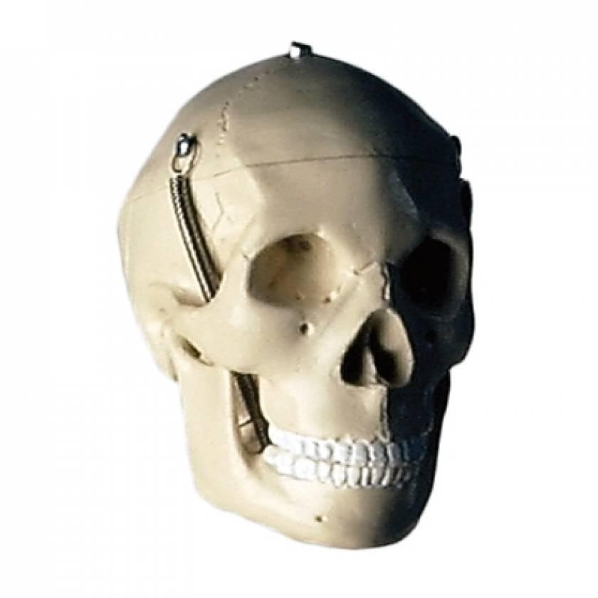 Mini-Skull