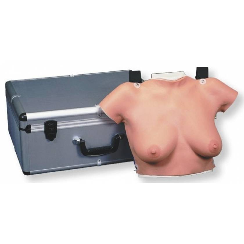 Wearable Breast Self-Exam Model with Carrying Case