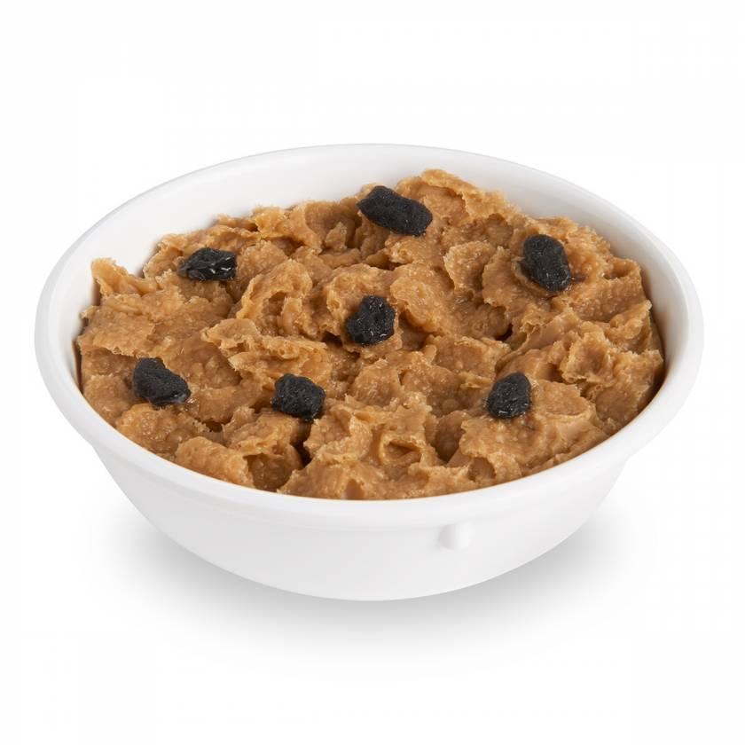 Life/form Raisin Bran Flakes Food Replica