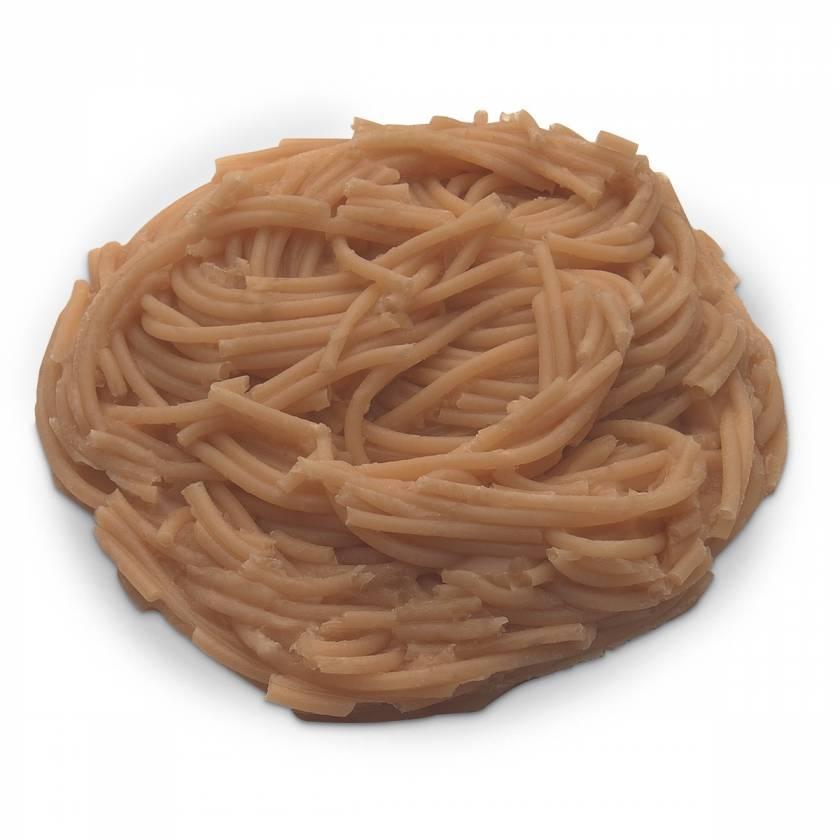 Life/form Spaghetti Food Replica - Whole Grain