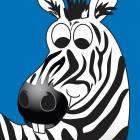 Clinton Wall Panel - Zebra