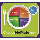 MyPlate Poster - 20 in. x 18 in.